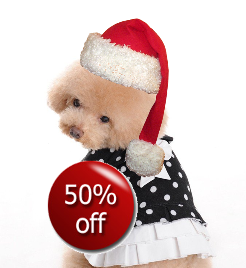 puppy2 Advent Day 19   A Whopping 50% Off ALL Dresses!