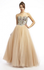 Prom Girl Meets Dress