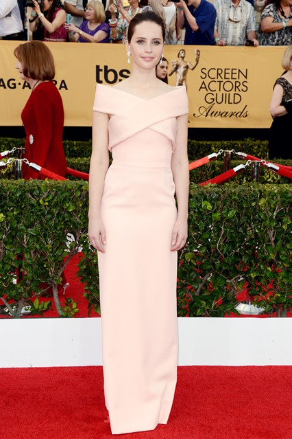 Felicity Jones SAG Awards Dress Girl Meets Dress