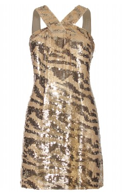 Rachel Zoe Dresses Brenda Sequinned Dress Girl Meets Dress
