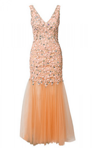 Prom Girl Meets Dress 9